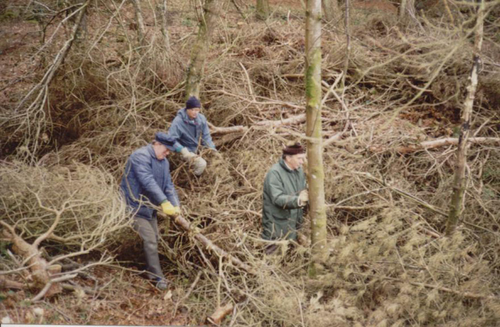 Hillfort Clearance